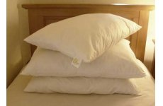 BAAVET PURE WOOL PILLOWS